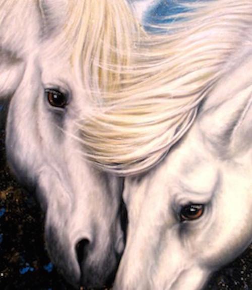 Chevaux d'amour de Daniel Trammer 60x90 Cm